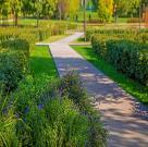 Парк «Садовники» 23